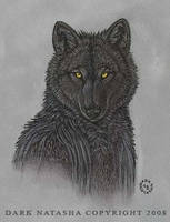 Black Shadow by darknatasha