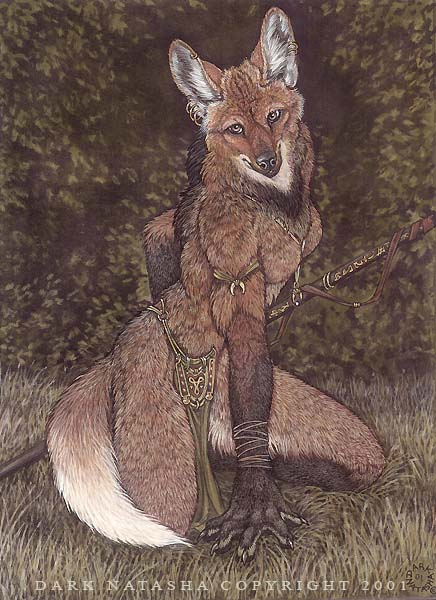 Maned Wolf by darknatasha