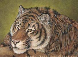 Tiger Eyes by darknatasha