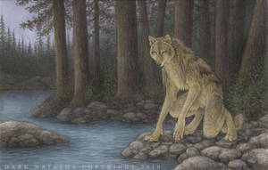 Wolf Creek by darknatasha