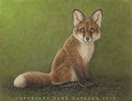FoxPup by darknatasha