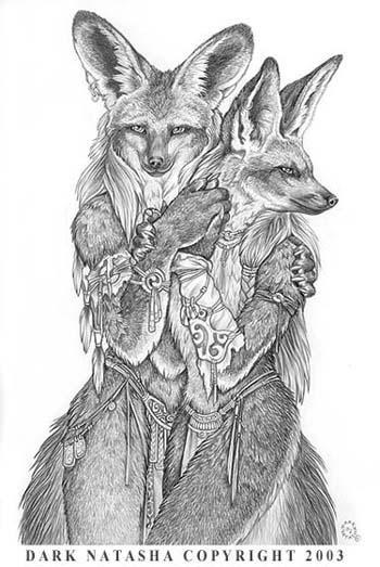 Bat-eared foxes by darknatasha