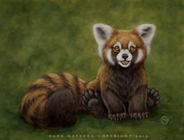 Little Red Panda by darknatasha