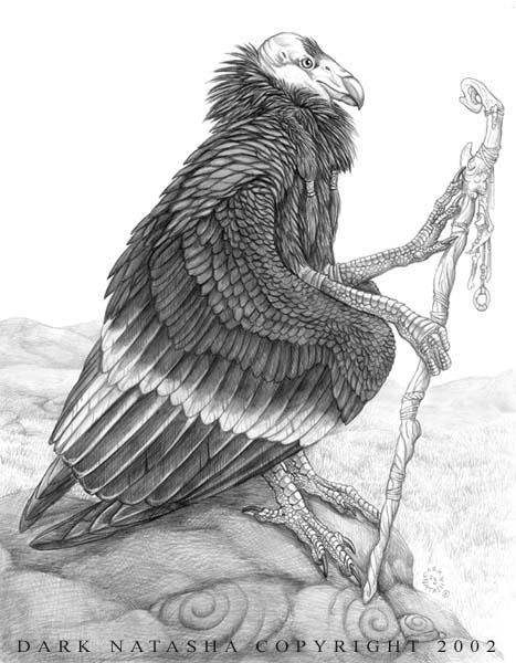 Condor by darknatasha