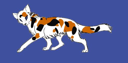 Warrior cat maker calico by pokespeblazey on deviantart