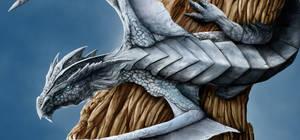 Dragon - Details