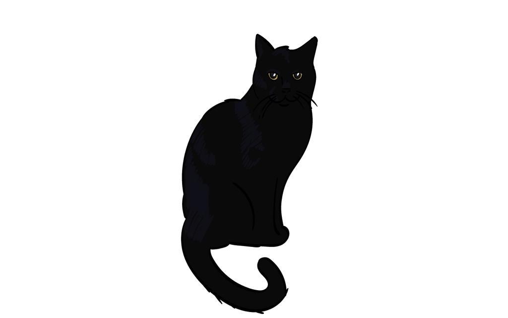 Salem by Nailkita