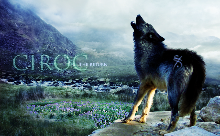 ^ Twilightstars ^ Wolves The_return_by_scarygoround-d381l6p