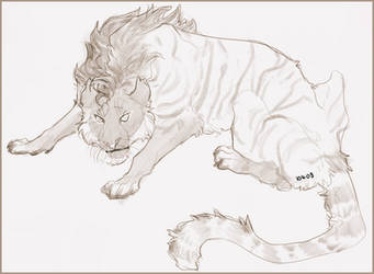 my tigon by beetlebite