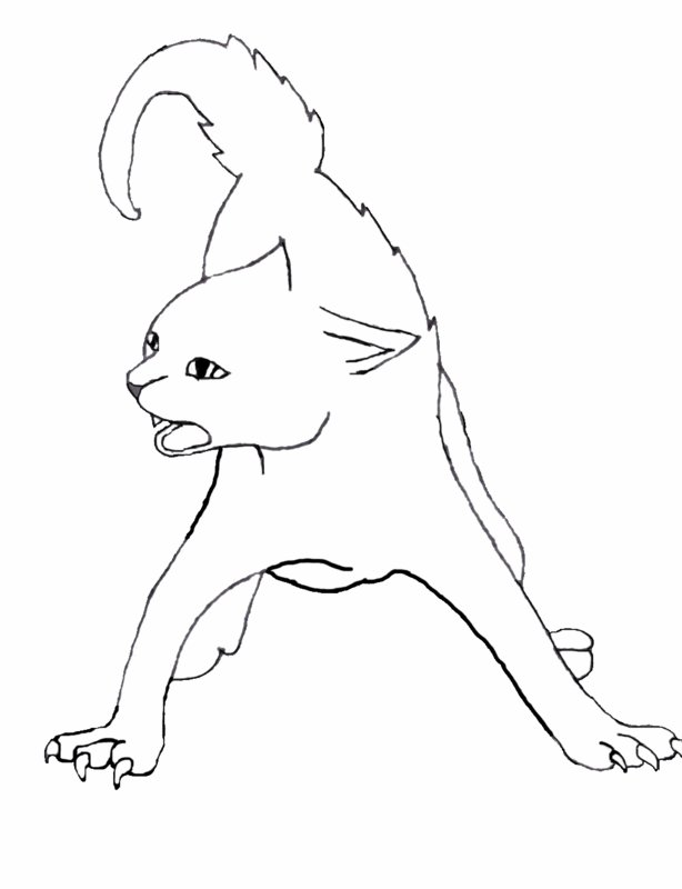 Cat Hissing Line Art by RoseaDarkHand on DeviantArt Female Drawing Outline