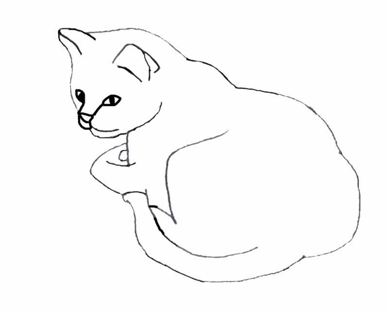 Line Drawing Of Cat : Cat sleeping line art by roseadarkhand on deviantart