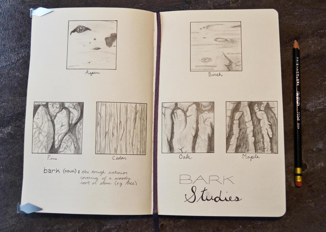 Moleskine Studies: Bark by wondrousbutstrange