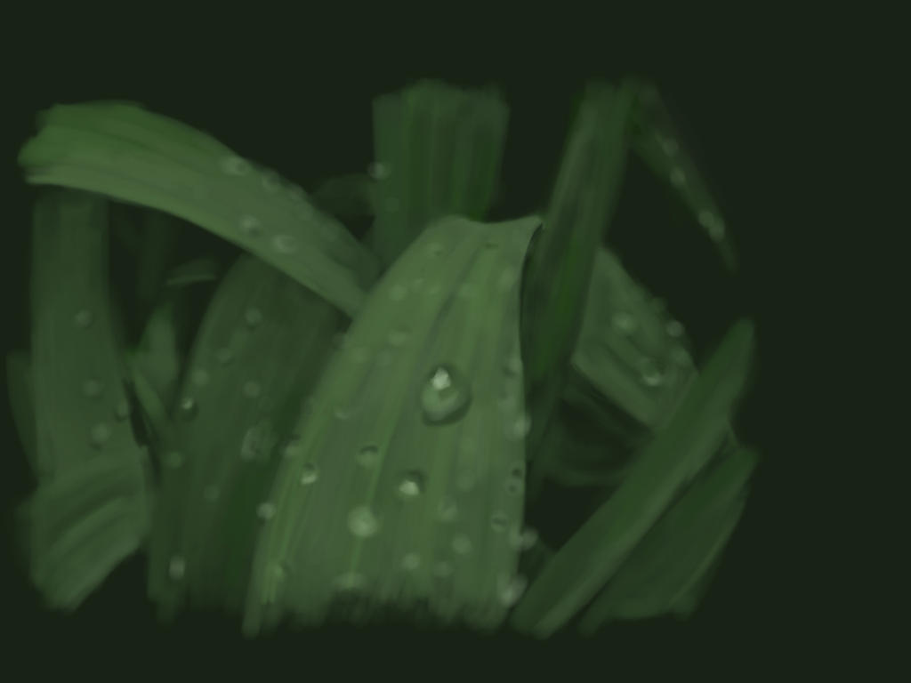wet grass on sketch book by ickkow