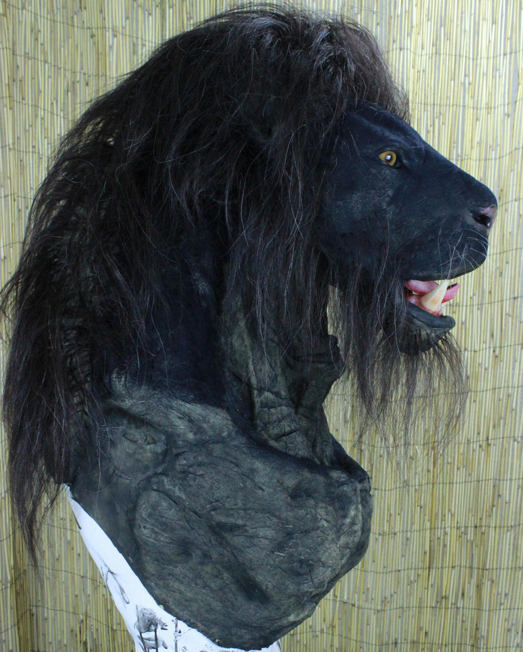Melanistic Animals