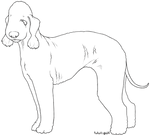 Free Lines - Bedlington Terrier