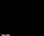 Free Lines - American Cocker Spaniel