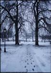 Winter Road ll