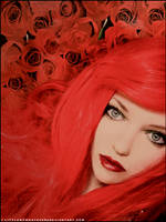 Rose Red by littlemewhatever