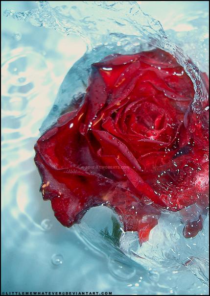 Frozen Beauty by littlemewhatever