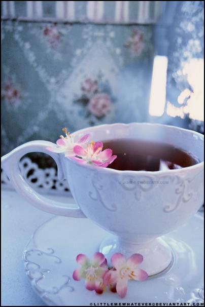 najromanticnija soljica za kafu...caj - Page 2 F9637151d281d3c5d1744f614e6a2fd9-d38dw50