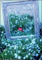 Valentines 2011 -Hidden Heart- by littlemewhatever