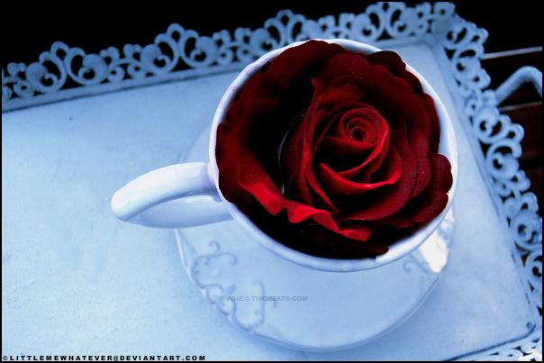 najromanticnija soljica za kafu...caj - Page 3 Eb21320f5daa0d6d679fa434a301d2f0-d3dtg3h