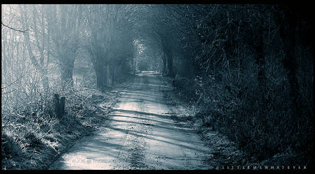 Morning-Mist by littlemewhatever