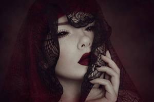 Cobweb Lace - I by KimJSinclair