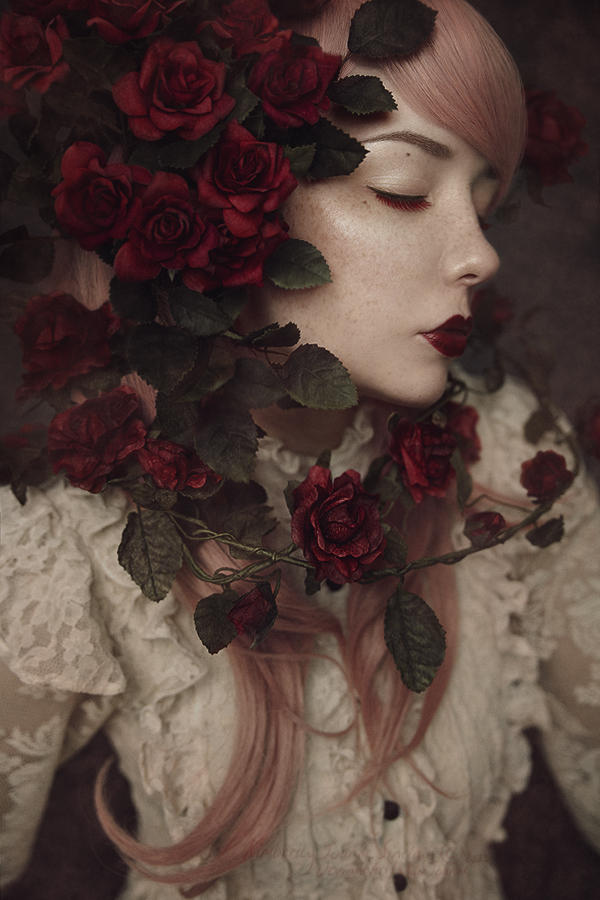Red Roses - I by KimJSinclair