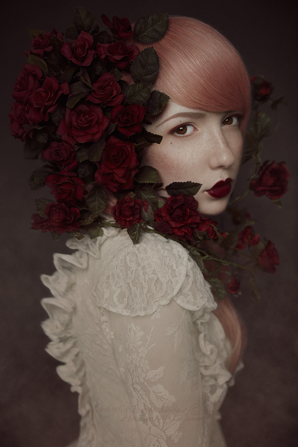 Red Roses - III by xKimJoanne