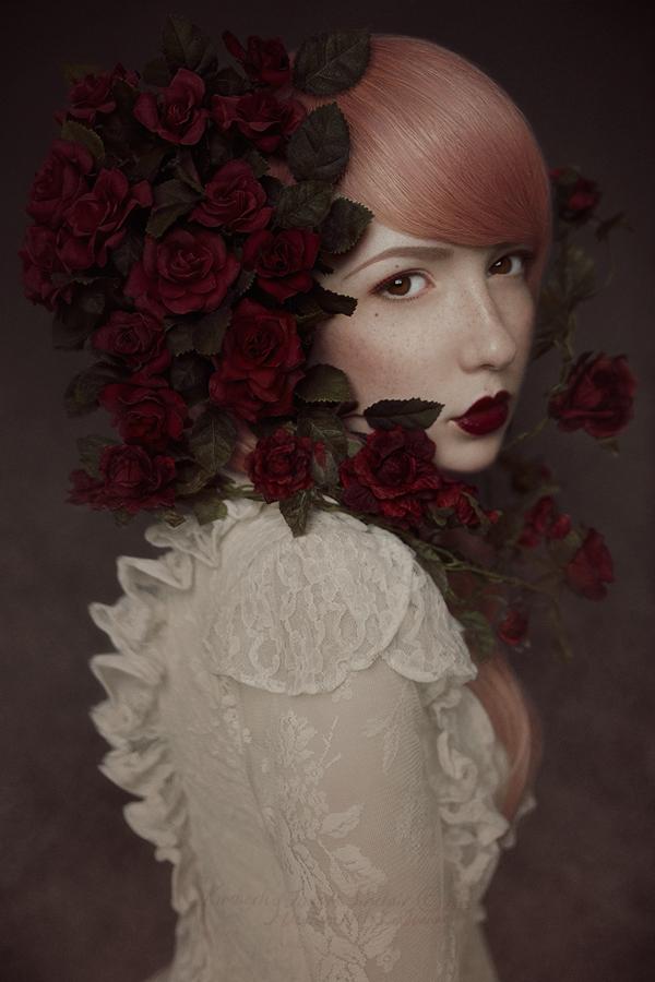 Red Roses - III by xKimJoanne