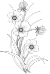 flowers 3 png