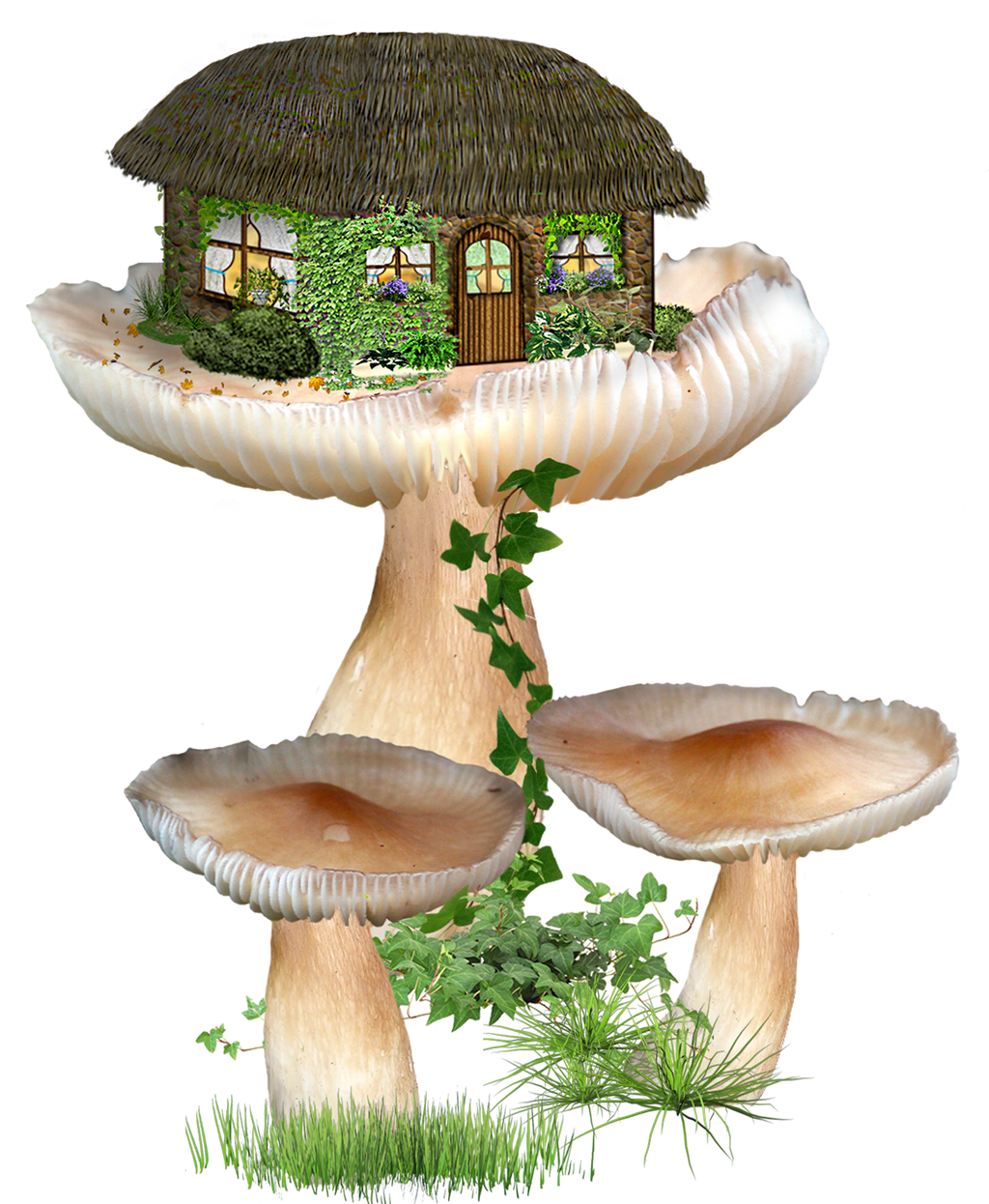 fairy fantasy home by roula33 resources stock images clipart fairy ...