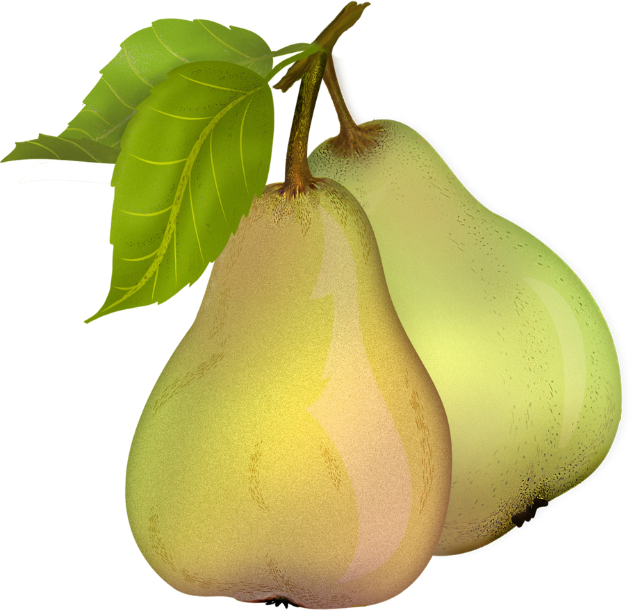 Pear 10 by roula33 on DeviantArt - 826.0KB