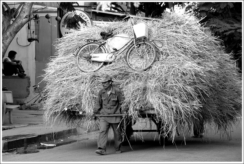 The Hay Carrier by scottk2