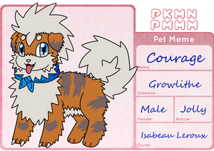 PKMN-PMMM: Pet App- Courage