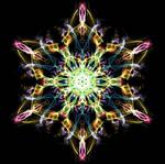 Jelly-Starfish