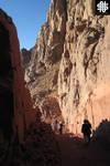 Mount Sinai VIII