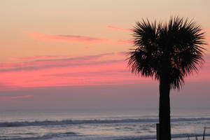Sunset Daytona. by sweatangel