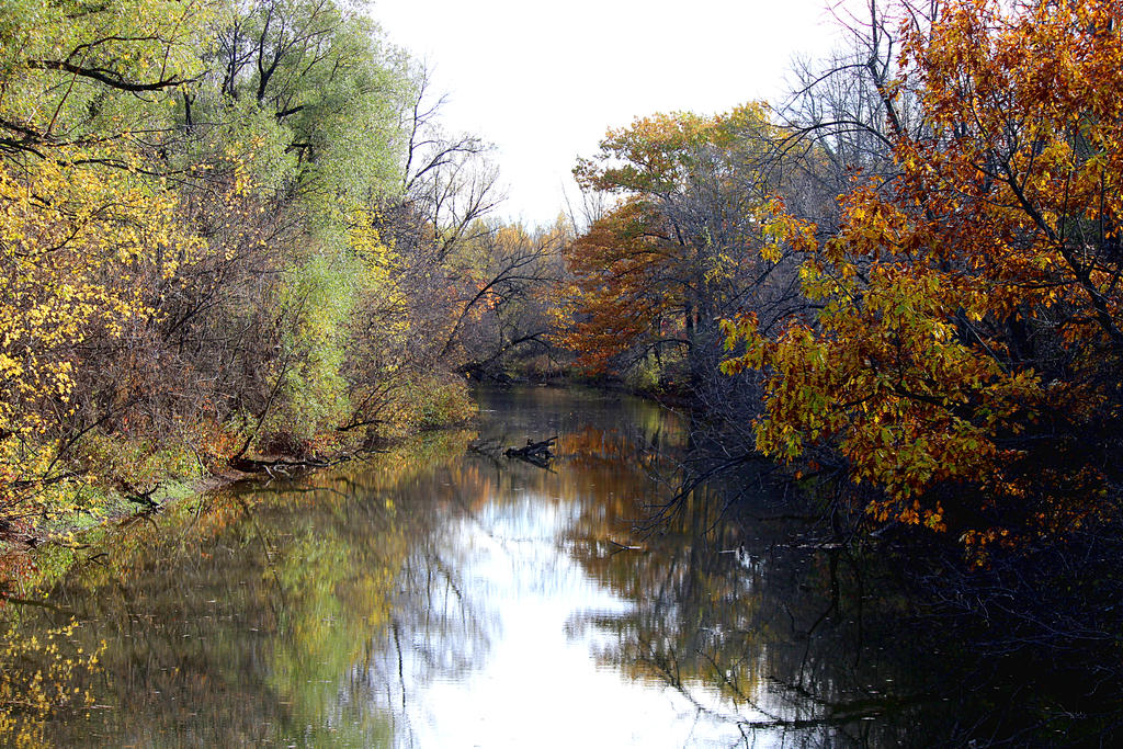 Fall reflection. by sweatangel