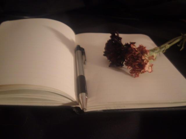 Dear_Diary__by_final