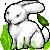 free rabbit icon by AlieTheKitsune