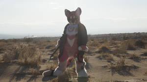Nightmare Cat Sand Dunes 2