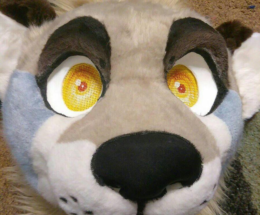 Otter Sneak Peek