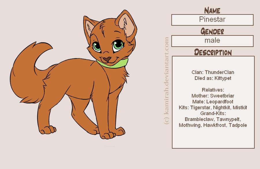Pine Warrior Cat