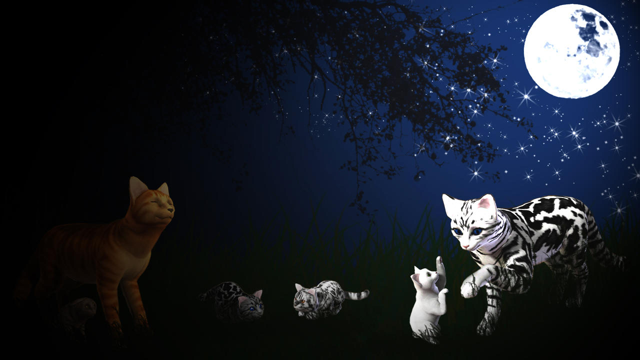Beautiful Wallpaper Night Cat - warrior_cats__family_at_night_by_marauderwolf93-d6pbwcb  Best Photo Reference.jpg