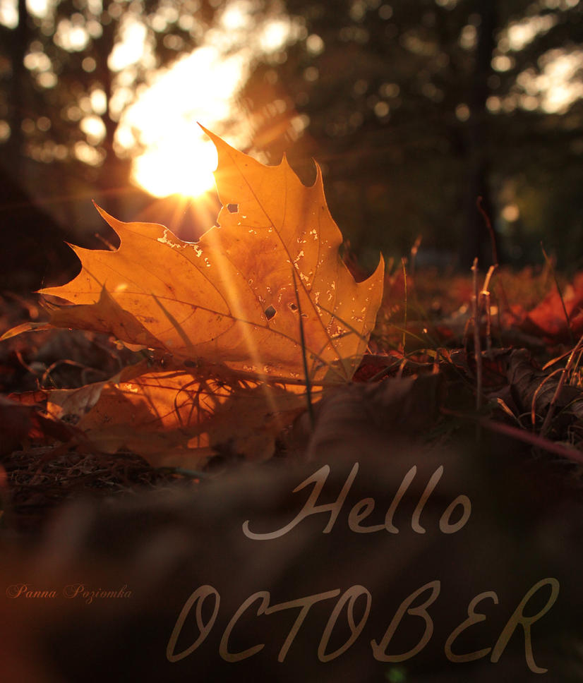 Hello October. by panna-poziomka on DeviantArt
