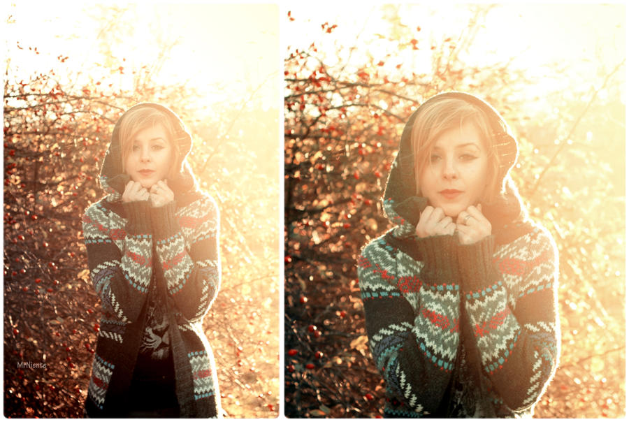 warm autumn II by panna-poziomka