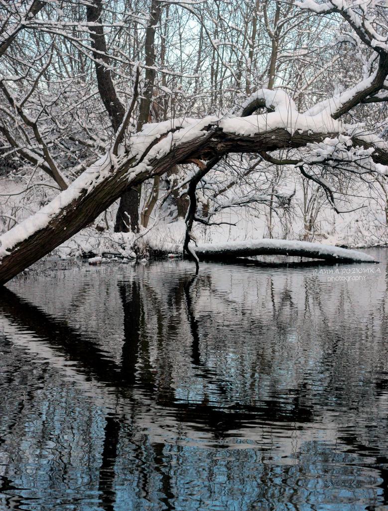 Reflection by panna-poziomka