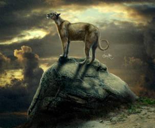 Spirit Animal by Orouthi